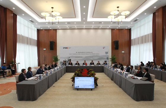 10th BRICS HIPO Meeting attended by CG sir